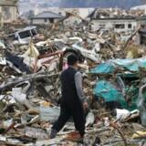 En mand går gennem efterladenskaberne efter jordskælvet og tsunamien i april 2011 i byen Rikuzentakata.