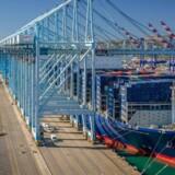 A.P. Møller-Mærsks havneselskab, APM Terminals, har vinket farvel til Peder Søndergaard, der de seneste år har haft titel af Chief Portfolio Officer med ansvar for 32 havneselskaber og global forretningsudvikling, herunder køb og salg.