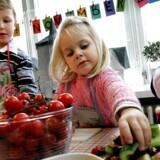 Arkivfoto. Flere kommuner flytter børn under tre år i børnehave. Det får konsekvenser for hele stuen, advarer pædagoger.