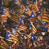 Arkivfoto fra den catalanske nationaldag - her fejret i Catalonien selv.