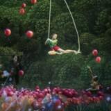 Den unge pige med de røde bær i »Bosch' drøm« betragtes af bl.a. Salvador Dalí nede på jorden til venstre.
