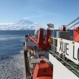 Den kinesiske isbryder »Xuelong« var allerede i 2012 på sin første sejlads fra Kina til Svalbard gennem Nordøstpassagen og var således frontløber i en udvikling, hvor landet satser på den korte sejlrute over Arktis. I sidste måned udgav Kinas søfartsstyrelse således Arktisk Navigationsguide, som skal hjælpe landets skibsfart gennem de isfyldte farvande. Foto: Xinhua/Sipa USA