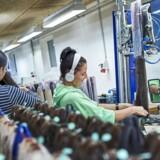 ARKIVFOTO. Minkavler Birger Primdahl beskæftiger mange øst arbejdere i produktionen på sin Minkfarm ved Holstebro.