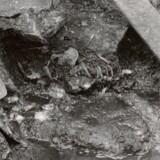 Arkæologer fandt for to år siden resterne af en 800 år gammel birkebeiner i brønden og er senest stødt på både hans hoved og en løs tand. Det giver pludselig sagaerne en helt anden sandhedsværdi, mener historikere. (Foto: Riksantikvaren, Oslo)
