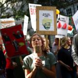 Verden over var millioner gået på gaderne og gået i forbøn til fordel for klimaet. Her i London.