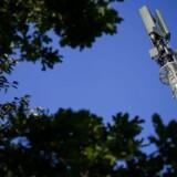 5G-mobilteknologien ventes taget i bredere brug i løbet af 2020 og skal især sikre langt hurtigere dataforbindelser. Arkivfoto: Fabrice Coffrini, AFP/Ritzau Scanpix