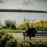 »I naturen finder vi behag og beroligelse ved årstidernes tilbagevenden og den regelmæssige cyklus af dag og nat,« skriver Kasper Støvring.