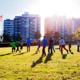 Nye tal fra Udlændinge- og Integrationsministeriet viser, at 90 procent efterkommere og tre fjerdedele af indvandrerne taler dansk i hjemmet.