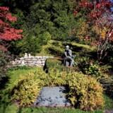 James Joyce er begravet på kirkegården i bydelen Fluntern i Zürich sammen med sin hustru, Nora Barnacle, deres søn, Giorgio, samt dennes anden hustru, Asta Osterwalder Joyce. Nu vil to irske politikere have Joyce og hans hustru genbegravet i Dublin.