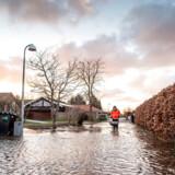 (ARKIV) Jyllinge Nordmark ved Roskilde Fjord, onsdag den 2. januar 2018. Klimaændringer kan ændre boligmarkedet, fordi prisen på attraktive kystnære boliger presses ned af risikoen for oversvømmelser. Det skriver Ritzau, mandag den 21. oktober 2019.. (Foto: Mads Claus Rasmussen/Ritzau Scanpix)