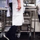 »Et eksempel er vores køkken. Her har vi 13 forskellige nationaliteter. Ud af 23 kokke er fire etniske danskere - og det er bestemt ikke fordi, vi ikke vil ansætte ledige danskere. Det er, fordi vi får meget få ansøgninger fra kvalificerede danske kokke, når vi har ledige stillinger,« skriver Jesper Olesen, direktør for Clarion Hotel Copenhagen Airport