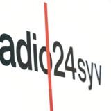 Radio24syv lukker, og DF har hovedansvaret, men hvad siger DF mon til de kanaler, der nu kommer i stedet? (Foto: Niels Christian Vilmann/Scanpix 2019)