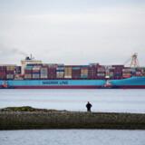 A.P. Møller - Mærsk satser massivt på nye brændsler, der skal få virksomhedens klimatunge skibstrafik gjort grøn.
