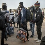 »Hvert år kommer der millioner af nye unge i Afrika, og størstedelen af dem har ingen udsigt til et job. Afrika kommer derfor på godt og ondt til at ligge højt på den europæiske dagsorden,« skriver SF'eren Halime Oguz. På billedet: migranter i det afrikanske land Niger, der ufrivilligt vender tilbage til hjembyen efter forgæves at have forsøgt at komme mod Europa.