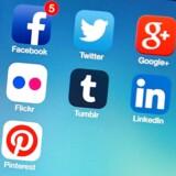»I dag ved Google både hvilke apps du har på din telefon og hvilke informationer, der knytter sig til dem. Google kender også hele din søgehistorik – selvom du troede, du havde slettet den,« skriver Mia Amalie Holstein.