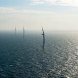 På Horns Rev 3 har Vattenfall opsat, hvad der for få år siden var verdens kraftigste vindmøller, som hver kan levere 8,3 megawatt.