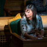 »Venstres politiske ordfører, Sophie Løhde, har durkdrevent anført felttoget,« skriver politisk kommentator om en omdiskuteret sag, der har optaget Christiansborg-sindene de seneste uger.