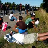 Siden flygtninge gik på den sønderjyske E45-motorvej i september 2015, er andelen af beskæftigede flygtninge og familiesammenførte steget markant. Det er blevet betegnet som en »integrationssucces«, men set over en længere periode er tallene lavere.