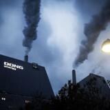 Avedøreværket afbrænder ikke længere kul, men biomasse, der fortsat udleder store mængder CO2. Nu bør der ifølge Klimarådet komme ekstra meget fokus på, hvorvidt biomassen er reelt bæredygtig og dermed kan betegnes som CO2-neutral.