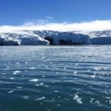 »70 pct.-klimaløftet er derfor et fantastisk spild af penge, ikke kun fordi det gør overordentligt lidt for så mange penge, men fordi der er så mange andre steder, hvor bare en smule af de 842 milliarder kunne have hjulpet utroligt meget mere,« skriver Bjørn Lomborg.