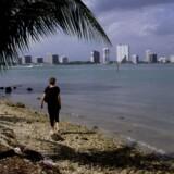Miami er blandt de steder i verden, hvor valuarkoncernen Knight Frank forventer de højeste prisstigninger på ejendomme i 2020.