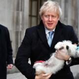 Boris Johnson, der torsdag stemte i Methodist Central Hall i selskab af sin hund Dilan, har kurs mod en jordskredssejr.