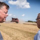 Fødevareminister Mogens Jensen (S) besøgte i august sammen med formanden for Landbrug & Fødevarer, Martin Merrild, planteavler Lars Korsholm Hansen i Store Heddinge.
