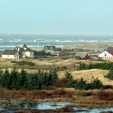 Sommerhuse er generelt billigere at købe om vinteren. Sommerhusområdet ved Blokhus i Nordjylland frister mange købere.
