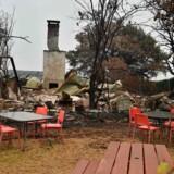En café er blevet ødelagt af naturbrande i Bilpin, 70 kilometer vest for Sydney.
