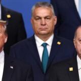 USAs præsident trump, OUngarns Viktor Orban og Tyrkiets Recep Tayyip Erdogan er tre statsledere, der i 2010erne har hældt malurt i bægeret for tilhængere af det liberale demokrati og internationalt samarbejde.
