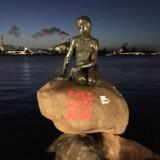 Den Lille Havfrue er blevet vandaliseret. Foto: David Rue Honoré.