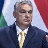 »Vi skal passe på med at råbe »ulven kommer« og betegne alt det, vi ikke kan lide, som et problem for demokratiet. I stedet må vi op af lænestolen og slås med åndens våben – og lytte os frem til, hvad der ligger bag det, vi ikke kan lide,« skriver Bertel Haarder om, hvordan EU skal håndtere blandt andre Ungarns Viktor Orban og Polens Andrzej Duda. Foto: EPA/ZSOLT SZIGETVARY HUNGARY