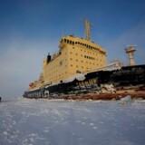 Rusland vil fordoble trafikken gennem de arktiske farvande. Her ses en russisk isbryder i Obbugten, hvor den i 2015 banede vej for en russisk olietransport.