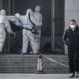 En patient bliver båret ind på det hospital i Wuhan i Kina, hvor personer smittet med nyt virus bliver behandlet. Søndag oplyser myndigheder i byen, at der er opdaget 17 nye tilfælde af lungebetændelse, som skyldes virusset. Str/Ritzau Scanpix