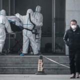 Eksperter holder nøje øje med meldinger fra Kina om, at et nyt virus kan smitte fra menneske til menneske. (Foto: STR/Ritzau Scanpix)