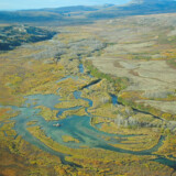 Upper Tularik Floodplain - et vådområde i Bristol Bay i Alaska, som måske med den amerikanske regerings neddroslede vandmiljøplan kan blive åbnet for minedrift. (Arkiv) Handout/Reuters