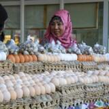 Tashkent er et mekka for folk, som er nysgerrige efter at spise nye retter, både de uzbekiske og de koreanske – ja, faktisk alt godt fra hele området. Og så er der nationalretten plov, som går under navnet »uzbekisk Viagra«. Foto: Madina Nurmanova.