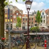Det er en overtrædelse af menneskerettighederne og privatlivets fred, at de hollandske myndigheder har sat et IT-system til at overvåge borgerne for at forudse, om de kan finde på at begå skattesnyd eller socialt bedrageri, fastslår en domstol for første gang.