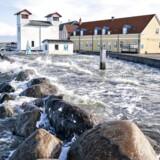 Limfjordens vandstand er steget og presser digerne i Løgstør. Billedet er fra onsdag i denne uge. Søndagens blæst vil også medføre forhøjet vandstand i den vestlige del af Limfjorden.