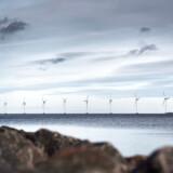 »Lige siden Martin Lidegaards (R) dage har landet lidt under socialdemokratiske energiministres manglende viden om energi.«