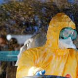 De italienske sundhedsmyndigheder annoncerede tidligere fredag, at 17 personer var erklæret smittet med coronavirus i landet.