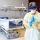 (ARKIV) Ledende oversygeplejerske på infektionsmedicinsk afdeling, Helle Ingmer, ifører sig det beskyttelsesudstyr, som læger og sygeplejersker skal være klædt i, i tilfælde af at coronavirussen skulle sprede sig til Danmark, Hvidovre Hospital, onsdag den 29. januar 2020.. Den første dansker er bekræftet smittet med coronavirus. Myndighederne forventer flere tilfælde den næste tid. Det skriver Ritzau, torsdag den 27. februar 2020.. (Foto: Ida Marie Odgaard/Ritzau Scanpix)