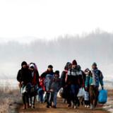 Flygtninge fotograferet nær den tyrkiske grænseby Edirne. Lørdag meddelte Tyrkiets præsident, Recep Tayyip Erdogan, at han havde »åbnet dørene« mod Europa.