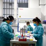 Overalt i verden er der mangel på coronatest. Nu har Statens Serum Institut udviklet en billig og hurtig test, som man forsøger at udbrede herhjemme og i udlandet. Billedet er fra et laboratorium i Berlin, hvor man tester for coronavirus.