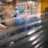 Sygeplejersker tilser en patient på intensivafdelingen på Vall d'Hebron hospital i Barcelona. Spanien har kurs mod de samme tragiske højder som Italien, når det kommer til smittede og dødsfald forårsaget af covid-19.