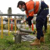 Forskere i Australien er her i færd med at samle spildevandsprøver, der skal testes for coronavirus. Lignende undersøgelser gennemføres over hele verden – også i Danmark.