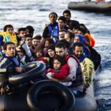 En fælles handlingsplan for håndteringen af flygtningekrisen ser ud til at kunne lykkes, efter EU og Tyrkiet er rykket tættere på hinanden. »Det er gode nyheder, men for tidligt at sige meget mere,« siger EU-diplomat.