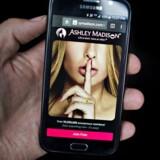 bedste gratis dating sites ny