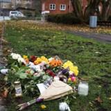 Kvinde knivdræbt i Herlev i Elverparken Parken ca ved Tornerosevej 59.
