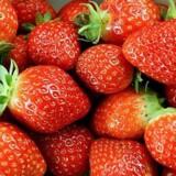 En rumænsk kvindes smag for søde bær har været en vigtig brik i politiets efterforskning af røverier i Jylland. Free/Www.colourbox.com